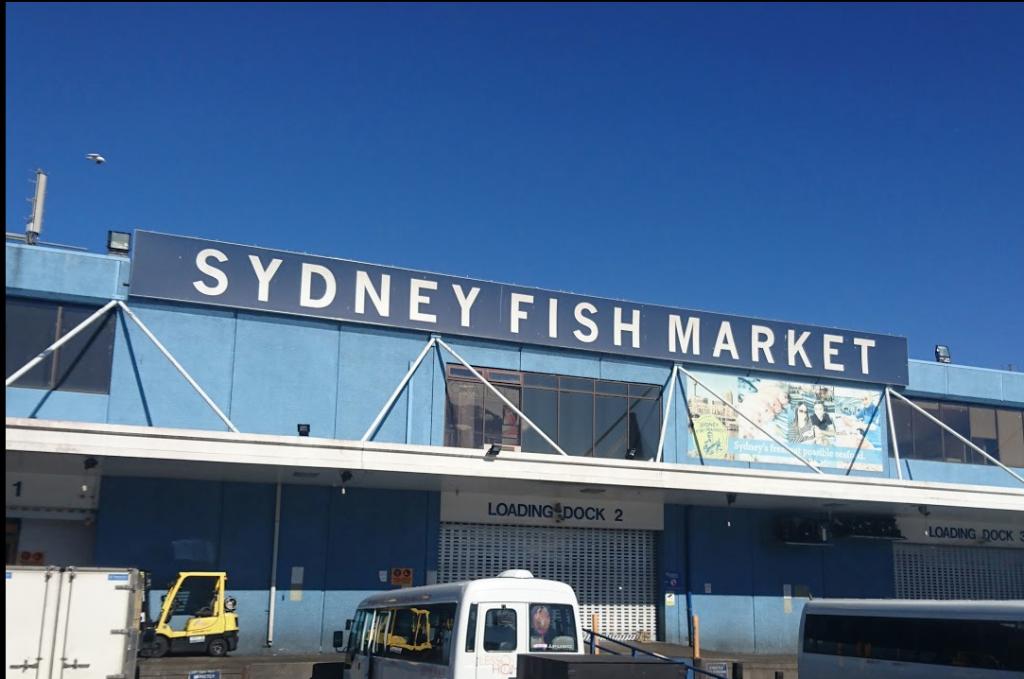 悉尼鱼市再开发项目超支5亿元