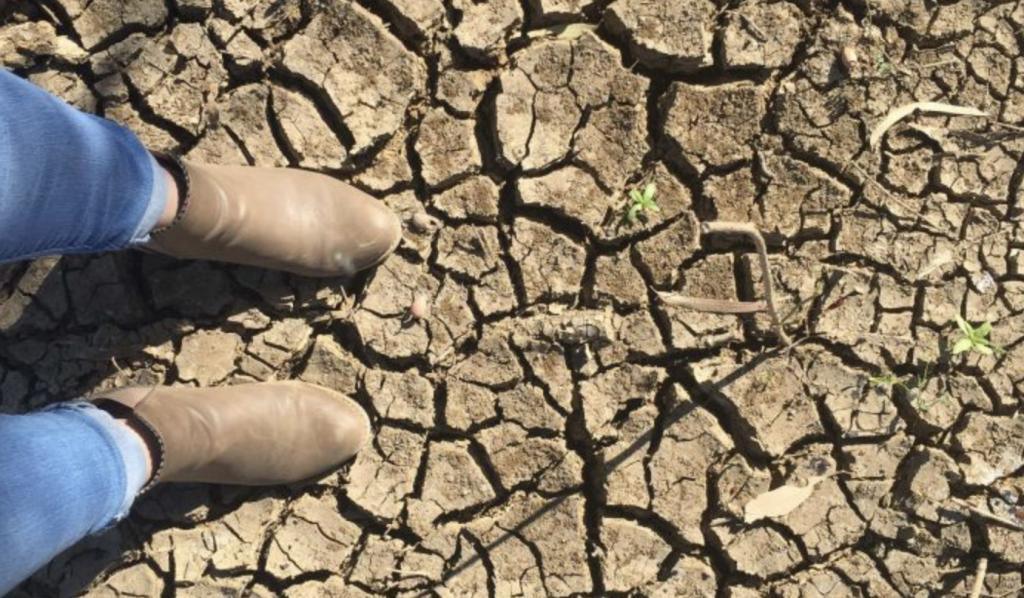 莫里森总理延长旱灾补贴发放时间