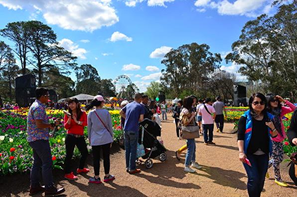 上财年來堪培拉的澳洲国内游客數量创新高!达548万人次