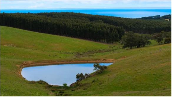 澳洲零售地产巨头Vicinity老板宣布2000万出售南澳农场