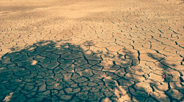全澳干旱高温将延续至明年 东部夏季更干