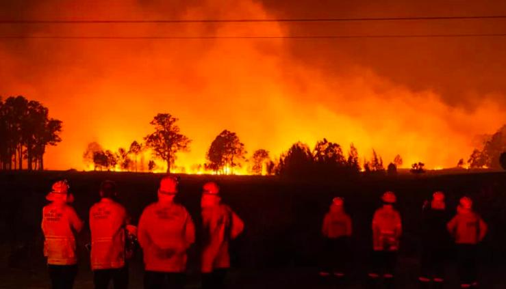 苹果公司将向澳大利亚山火救援工作捐款