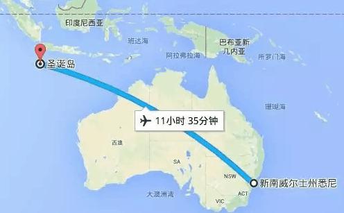 """【特别报道】澳洲武汉撤侨行动进行时!""""回家""""的路并不平坦"""