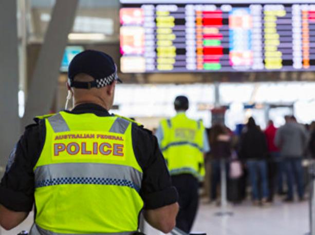 注意啦!严防非洲猪瘟 澳机场加大安检力度