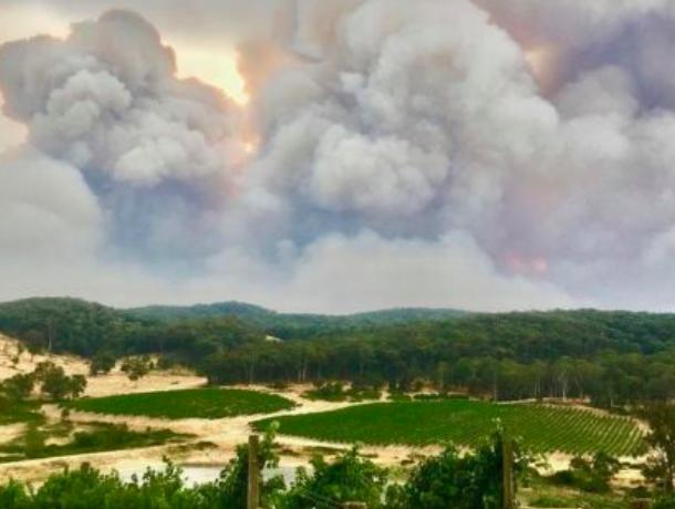 澳洲惊现「三合一」超级大火!60万公顷化焦土民宅要遭殃!