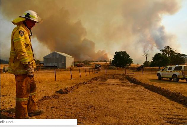 亚马逊宣布向澳洲林火救援捐款100万元