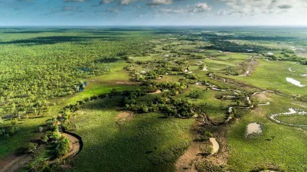 南非富豪豪掷7000万买下北领地大型养牛场