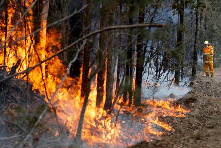 澳洲首都ACT处于紧急状态,丛林大火威胁房屋,火势向新州蔓延