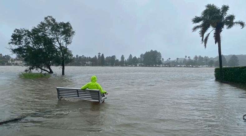 新州紧急状态服务处:对暴雨成灾的悉尼部分地区发出疏散命令