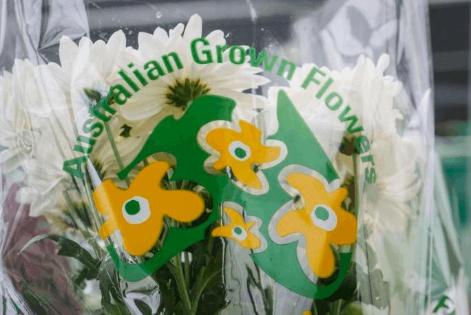 花农说这个情人节请买澳洲花
