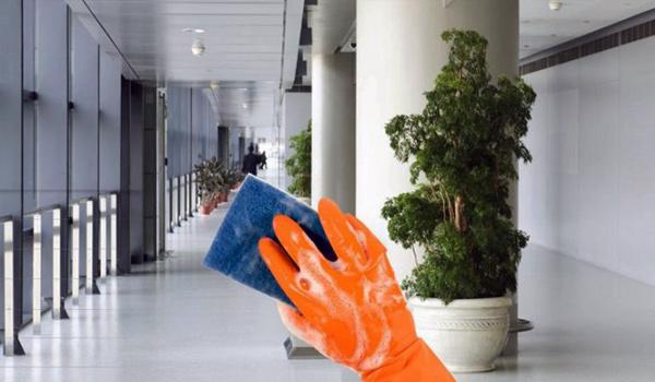 居家办公人群激增,公寓保洁业务获益