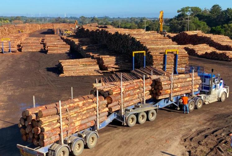中国暂停进口新州和西澳的木材