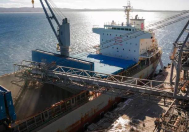反击中国贸易制裁!澳洲大麦种植户找到新市场 商机无限
