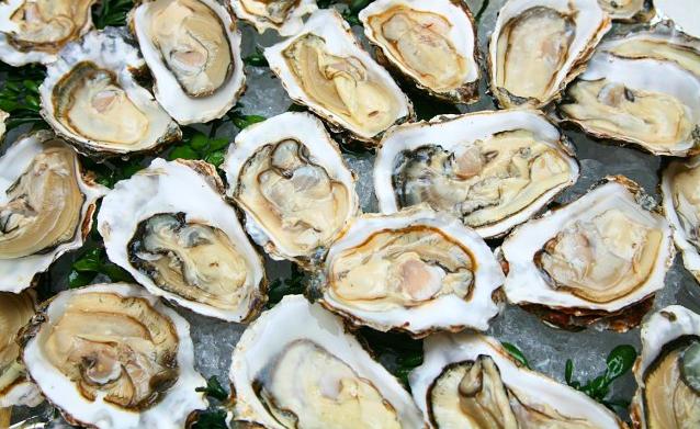 受零售需求提振,Angel Seafood上半年牡蛎销量创下纪录