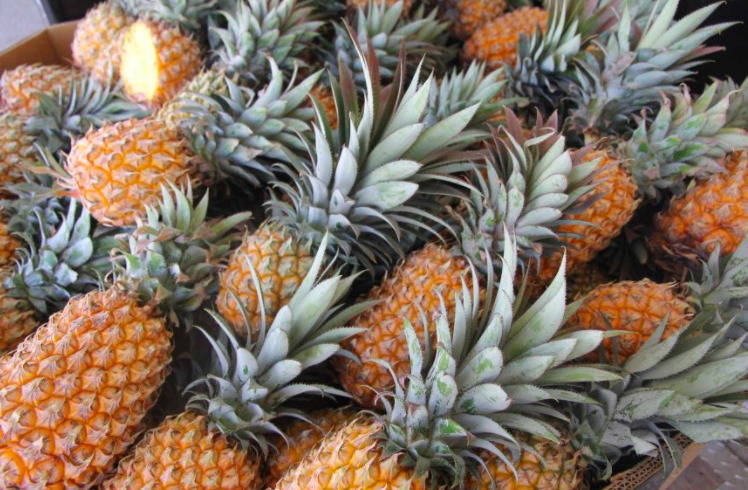 中国停止进口台湾菠萝,台湾号召人民多吃