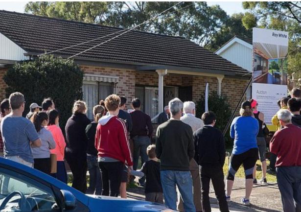 短短六个月涨了10万 悉尼楼市泡沫巨大!不少购房者不敢买房