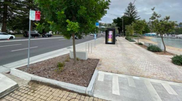 悉尼富人区这条街道改造后事故频发引行人不满!