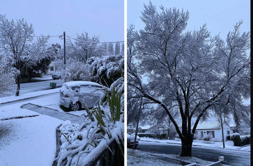 悉尼将迎来25年来最冷的一天