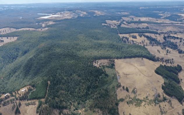 经过初步的野外工作,Galan Lithium确定了Greenbushes South的锂辉石潜力
