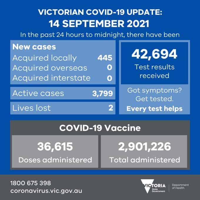 月14日维州新增445个本地感染病例!